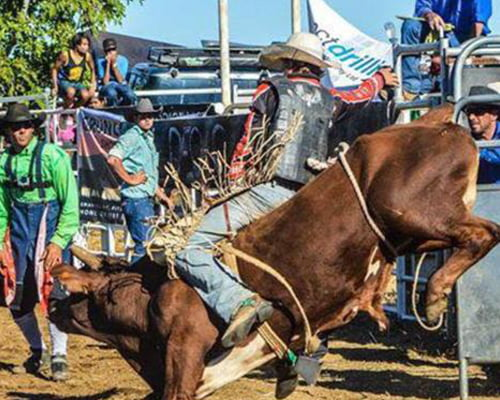 Old Valley Muster Rodeo